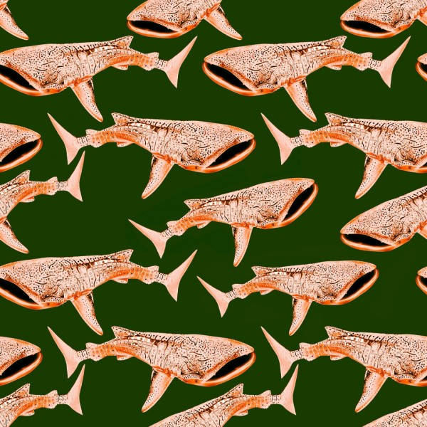 Whale shark Pink Gold Olive